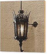 Outdoor Wall Lamp Dark Sepia Wood Print