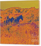 Outer Banks Horses Wood Print