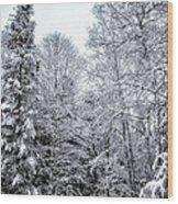 Over Coat Of Snow Wood Print