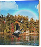 Over The Rainbow Wood Print