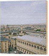 Looking Over Paris Wood Print