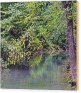 Overcast Reflections At Buck Creek Wood Print