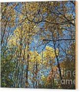 Overhead Glory Wood Print