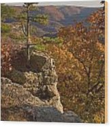 Overlook At Cecil Hollow Wood Print