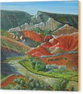 Overlook Near Ghost Ranch Wood Print