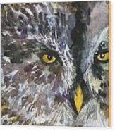 Owl Eyes Wood Print