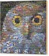 Owl Mosaic Wood Print