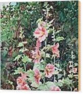 Oxenden Hollyhock Wood Print by Peter Sit