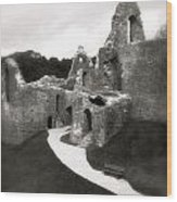 Oystermouth Castle Wood Print