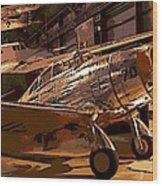 P-35 Wood Print