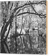 Pa. Country Stream Wood Print
