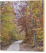 Pachaug State Forest Wood Print