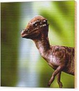 Pachyosaurus Dinosaur Wood Print