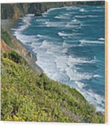 Pacific Coast Shoreline I Wood Print by Steven Ainsworth