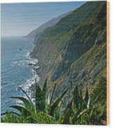 Pacific Coast Shoreline IIi Wood Print by Steven Ainsworth