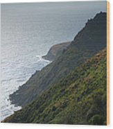 Pacific Coast Shoreline Iv Wood Print by Steven Ainsworth