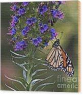 Pacific Grove Monarch Wood Print