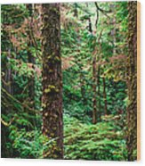 Pacific Rim National Park 14 Wood Print