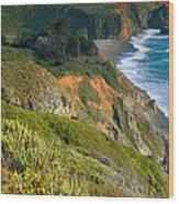 Pacific Shoreline Vii Wood Print