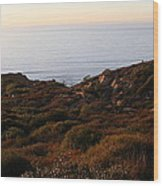Pacific Vista Wood Print