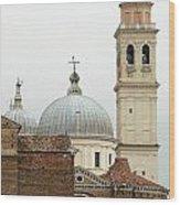 Padua Domes Padua Italy Wood Print
