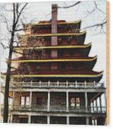 Pagoda Reading Pa. Wood Print