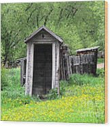 Pail Closet Virginia City Wood Print