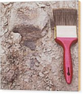 Paint Brush Next To Camarasaurus Wood Print