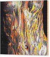 Paint Smears Wood Print