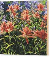 Paintbrushes Wildflowers Rainier National Park Wood Print
