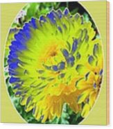 Painted Chrysanthemums Wood Print
