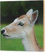 Painted Deer Wood Print