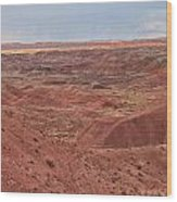Painted Desert 9 Wood Print