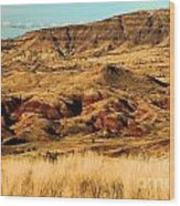 Painted Hills In Sheep Rock Wood Print