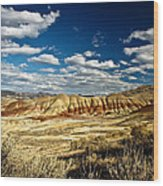 Painted Hills Oregon Wood Print