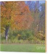 Painted Leaves Of Autumn Wood Print