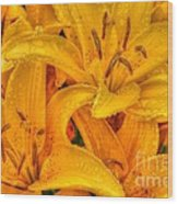 Painted Lily Wood Print