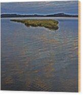 Painted River Wood Print