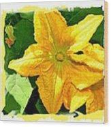 Painted Squash Blossoms Wood Print