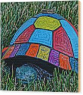 Painted Turtle Sprinkler Wood Print