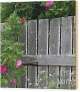 Painterly Fence And Roses Wood Print