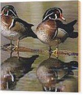 Pair Of Wild Birds Wood Print