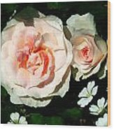 Pale Pink Roses In Garden Wood Print