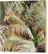 Palm Bank Wood Print