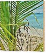 Palm Beach Wood Print