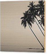 Palm Dreams Wood Print