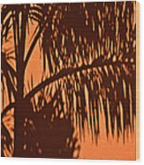 Palm Frond Abstract Wood Print