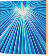 Palm Frond In Blue Wood Print