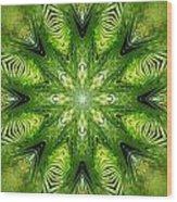 Palm Kaleidoscope 11 Wood Print