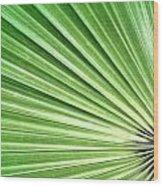 Palm Leaf Wood Print